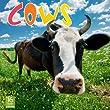 2012 Cows Wall calendar