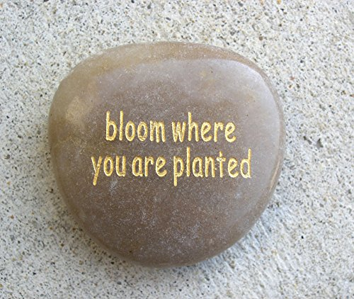 - Garden Artisans Bloom Where You are Planted Word Stone - 10 Pieces