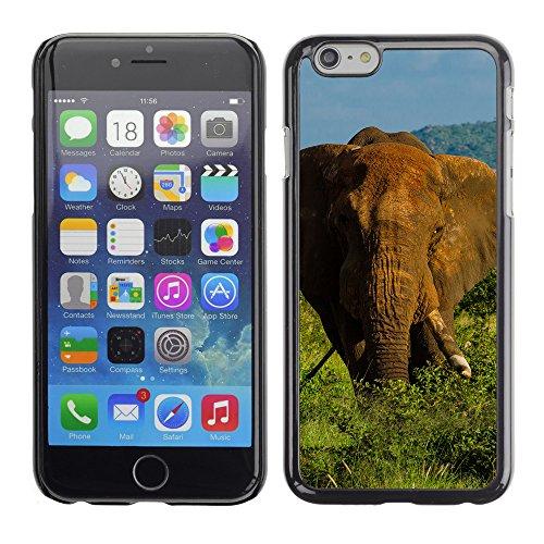 """Premio Sottile Slim Cassa Custodia Case Cover Shell // F00017277 l'éléphant // Apple iPhone 6 6S 6G 4.7"""""""