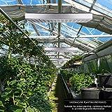 Grow Light for Indoor Plants,2020 Sunlike Full