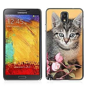 Carcasa Funda Case // V0000928 Cat Kitty Animal Pattern // Samsung Galaxy Note 3 N9006