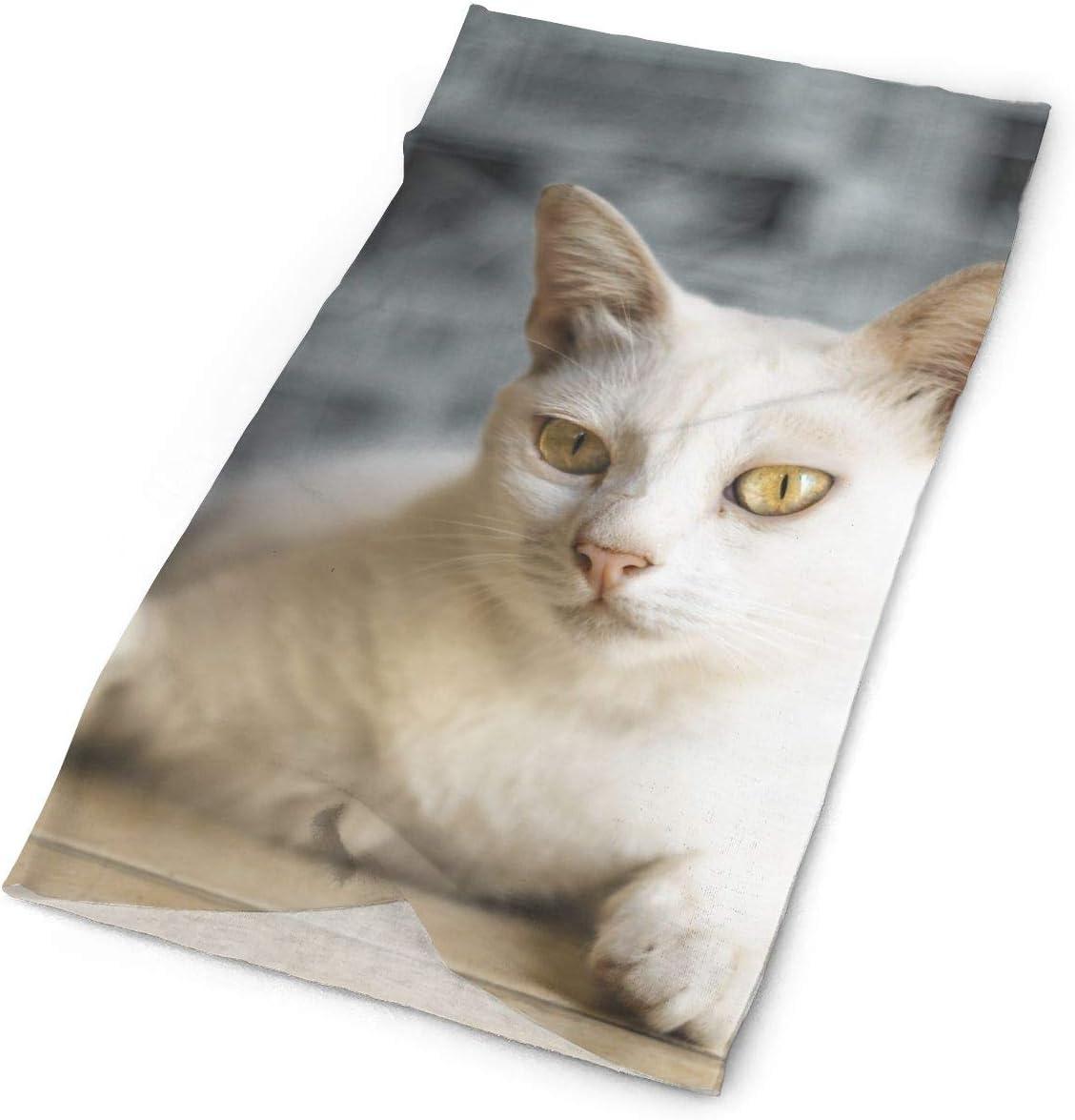 White Cat Glare Unisex Fashion Quick-Drying Microfiber Headdress Outdoor Magic Scarf Neck Neck Scarf Hooded Scarf Super Soft Handle