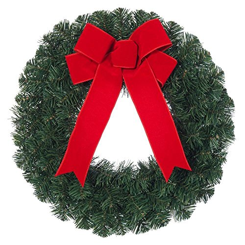 20 in. Noble Pine Artificial Wreath With Red Bow-Home Accents Holiday