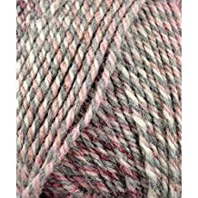 Plymouth (1-Pack) Encore Worsted Colorspun Yarn, #7990 Raspberry Drift