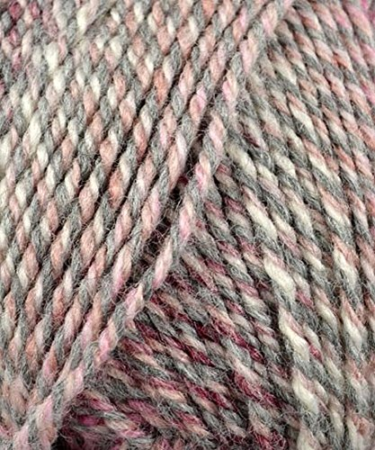 - Plymouth (1-Pack) Encore Worsted Colorspun Yarn, #7990 Raspberry Drift