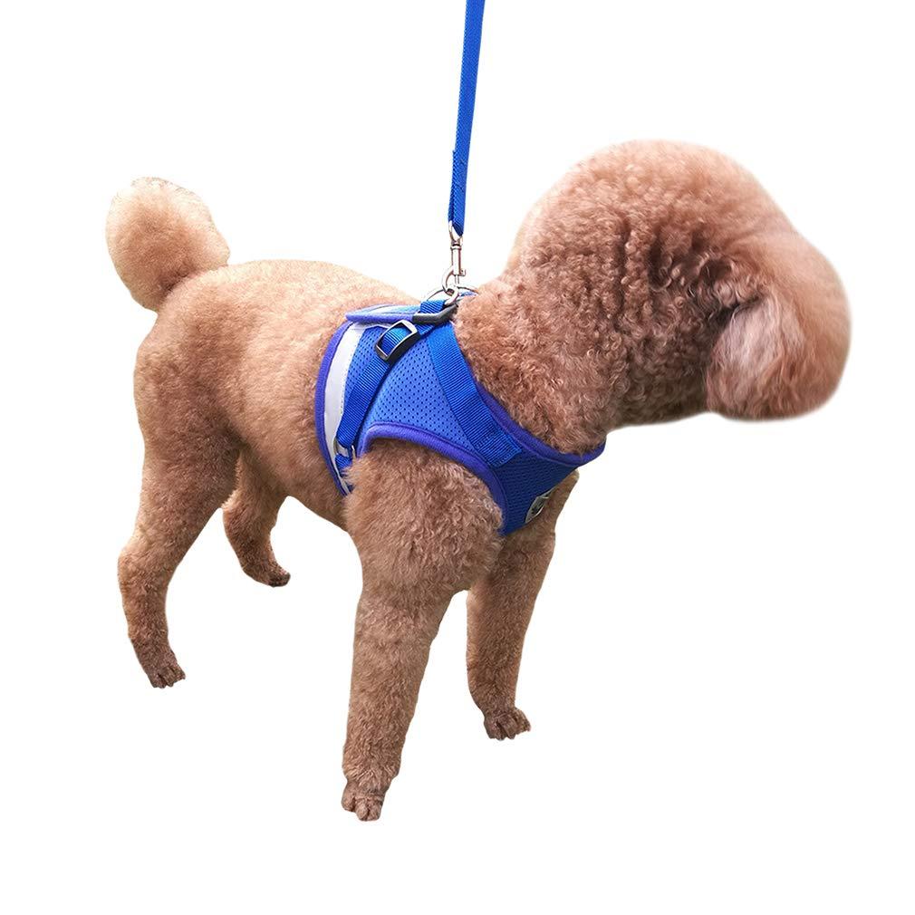 Rojo, XL QiCheng/&LYS Chaleco de Viaje Regular de Malla Transpirable con Cintur/ón de Seguridad para Perros y Gatos Chaleco de Seguridad para Mascotas