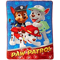PAW Patrol All Paws on Deck Micro Raschel Blanket