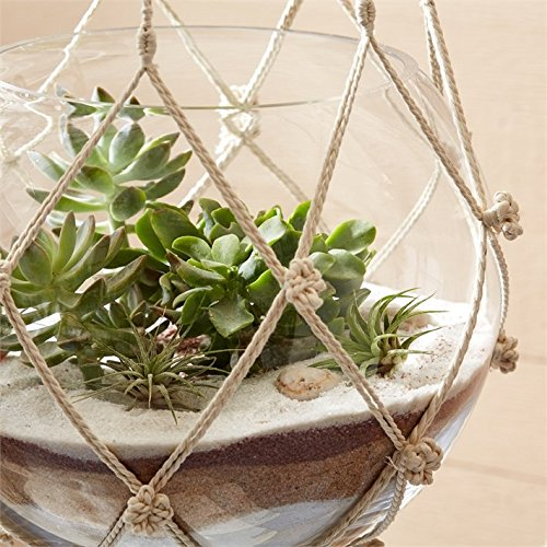 Two's Company Set of 5 Hand Braided Macramé Plant Hangers/Candleholders