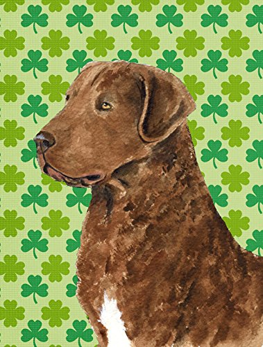 Caroline's Treasures SS4462CHF Chesapeake Bay Retriever St. Patrick's Day Shamrock Canvas House (Shamrock Bay)