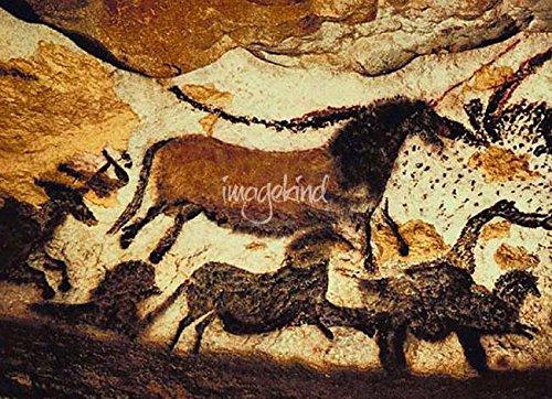 Imagekind Wall Art Print entitled Bulls And Horses Of Lascaux Cave by Richard Smith | 32 x 23 - Paleolithic Bulls