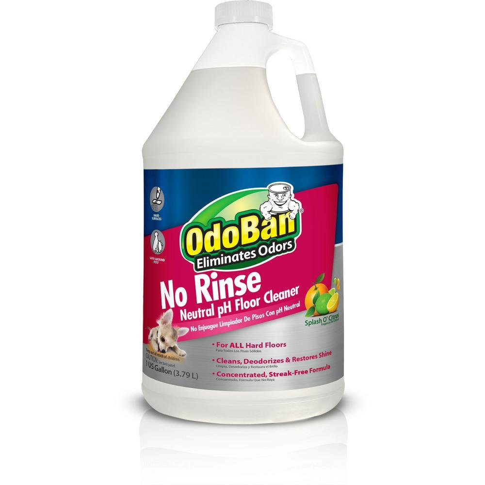 Amazon Com Odoban 11062 G Disinfectant Odor Eliminator