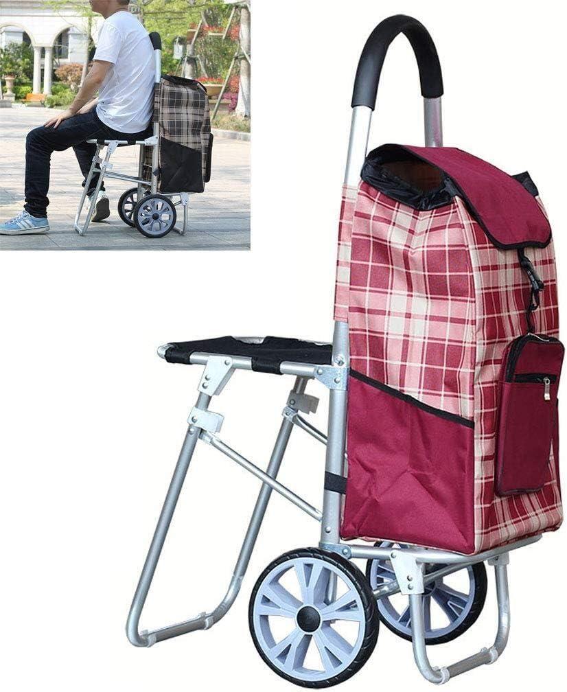 carrito de la compra convertible en silla