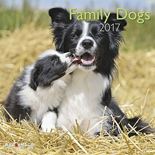 Family Dogs 2017 - Familienhunde A&I, Hundekalender - 30 x 30 cm