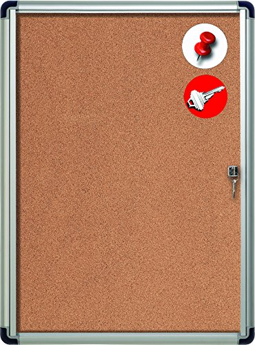MasterVision Enclosed Cork Bulletin Board with Lock, Indoor Use, 28