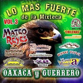 Amazon.com: Vol.3 Chilenas: Lo Mas Fuerte De La Mixteca Oaxaca Y