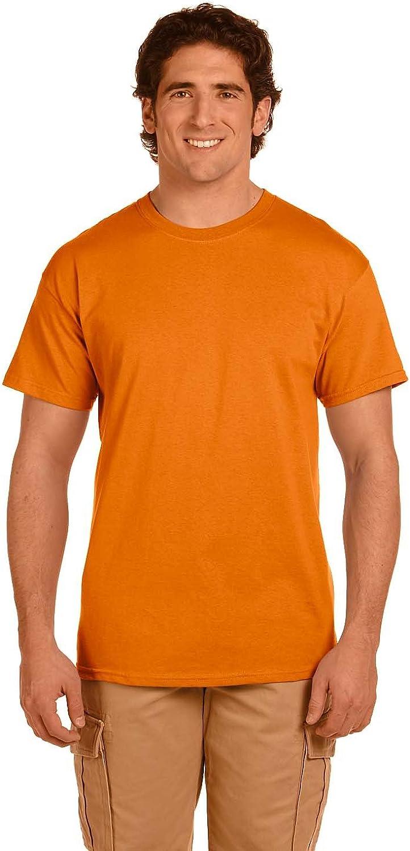 Fruit of the Loom 5 oz. 100% Heavy Cotton HD T-Shirt (3931)