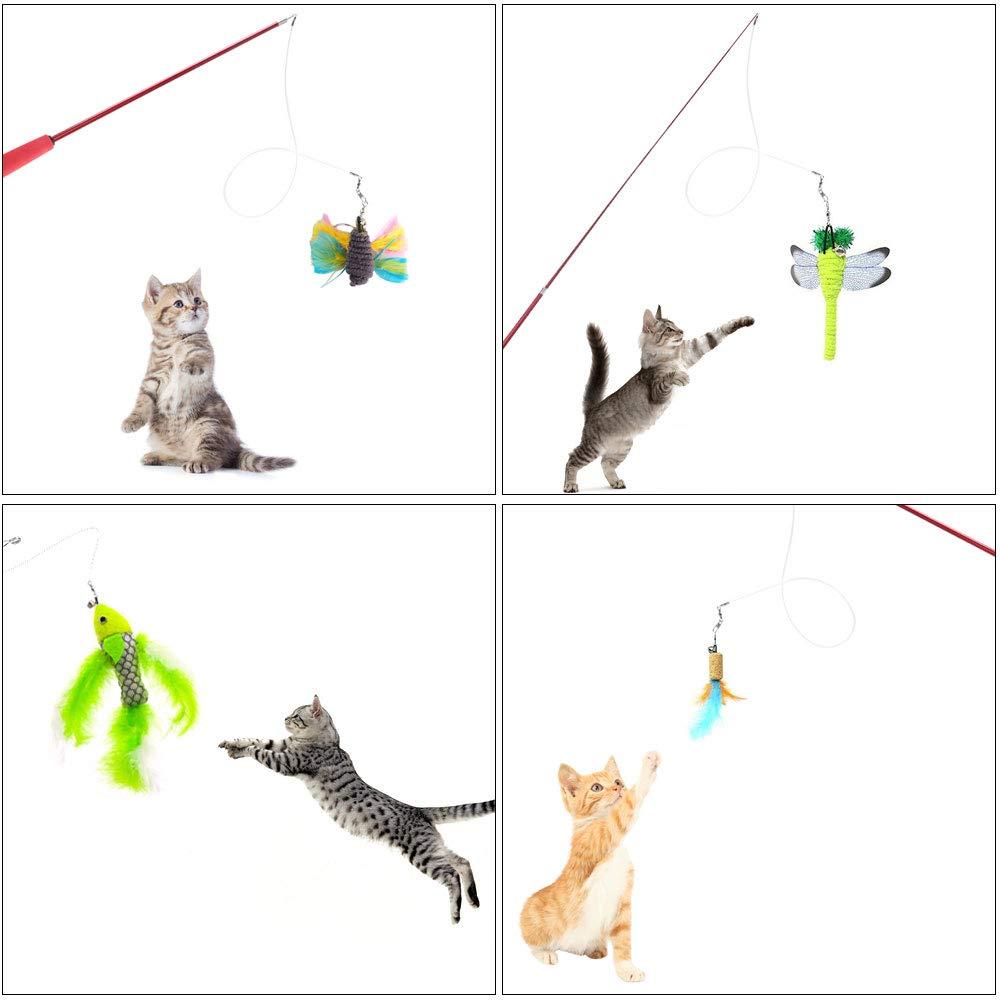 Giocattolo Gatti con Piuma Bacchette da Gioco Giocattoli per Gatti HO2NLE 6PZ Gioco Gatto Bacchetta Gatto Giocattoli Interattivi Gioco per Gattino Kitten Indoor con Palo Retrattile