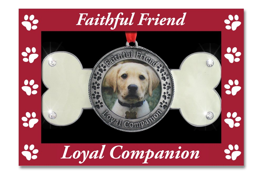Dog Bone Design with Faithful Friend Loyal Companion Embossed Around Picture BANBERRY DESIGNS Pet Remembrance Pet Memorial Ornament Dog Memorial Ornament Dog Photo Ornament