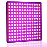 Lightimetunnel 45w LED Grow Light Panel Blue+Red Lighting for Indoor Plants Seedling Flowering Fruiting