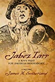 img - for Jabez Tarr: A Boy's Fight for American Independence book / textbook / text book
