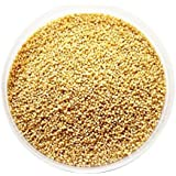 Foxtail Millet Seeds - 1kg