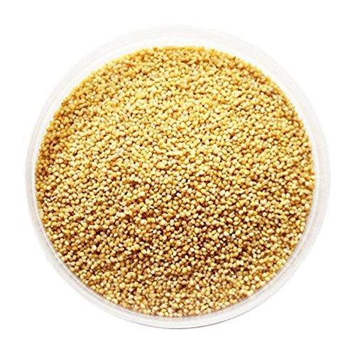 Semillas de mijo - 1 kg: Amazon.es: Alimentación y bebidas