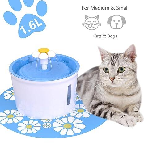 Amazon.com: Alimentador automático para mascotas ...