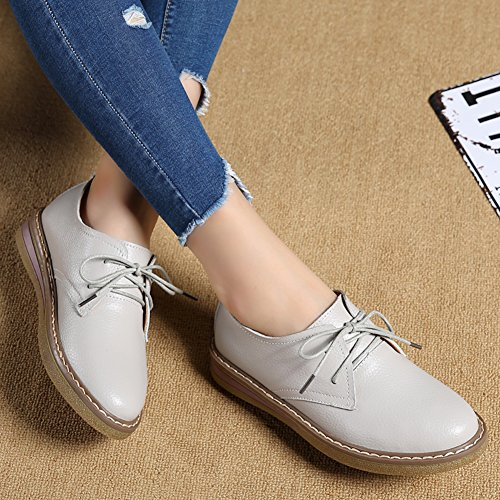 Flat Women Z Classic up Oxford Lace Gray Leather Faux SUO Shoe tTtrx5n