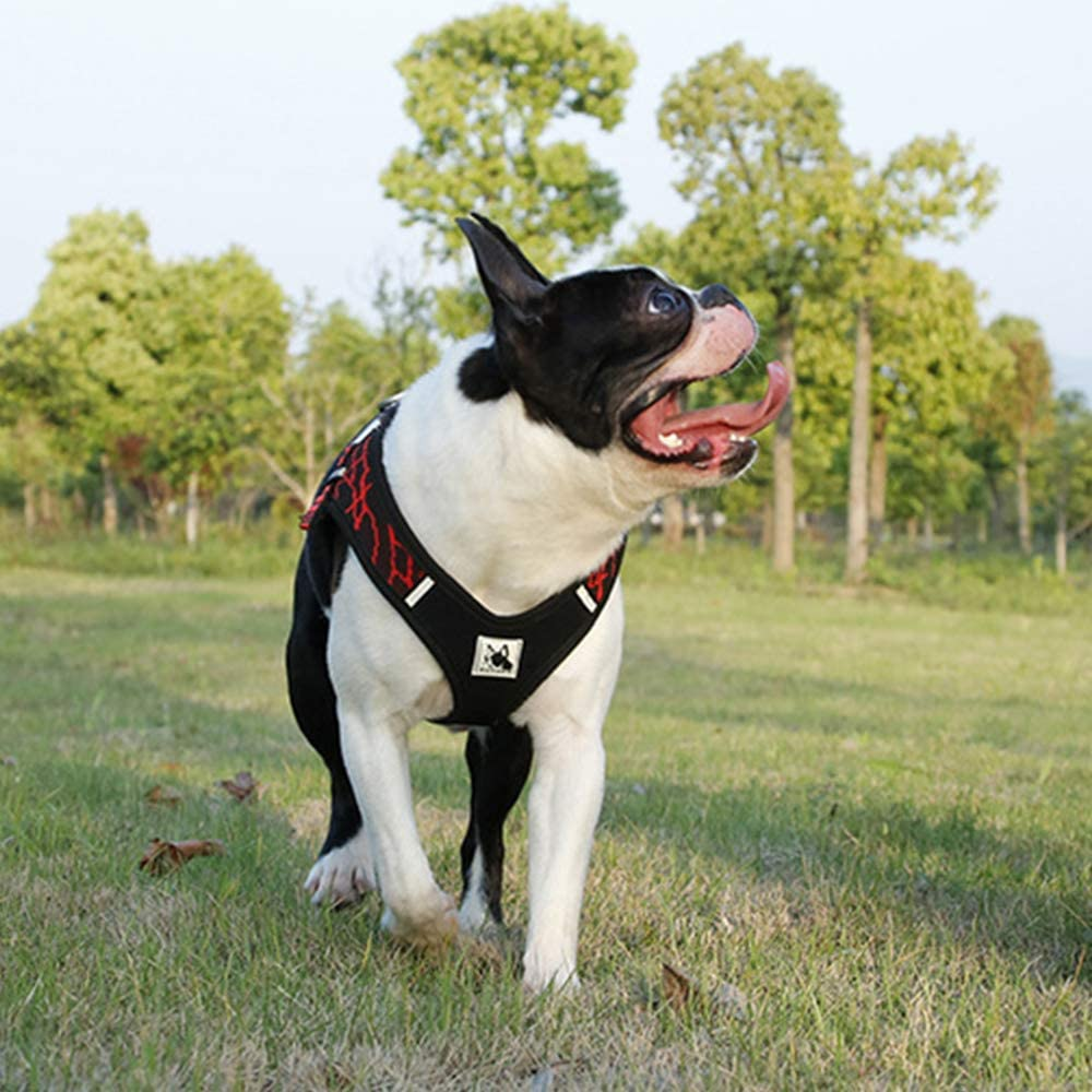 BVAGSS R/églable Respirante Harnais Anti Traction Pet Vest Harness pour Chien Gros Grande Moyen Petite Taille XH030 XS, Green