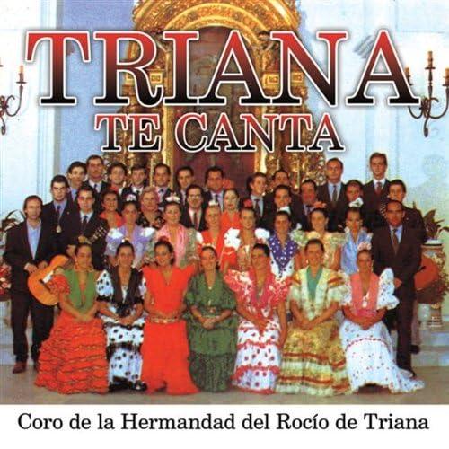 Canto a la Virgen del Rocio (Sevillana al Rocio)