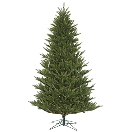Frasier Fir Christmas Tree.Amazon Com Vickerman Fresh Cut Frasier Fir Christmas Tree