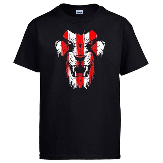 Diver Camisetas Camiseta Athletic león Cara Colores Bilbao: Amazon.es: Ropa y accesorios