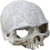 Hewnda Aquarium Decor Resin Artificial Head Skeleton Decoration - Aquarium Otaru Aquarium Decorative Cave Landscape Pet…
