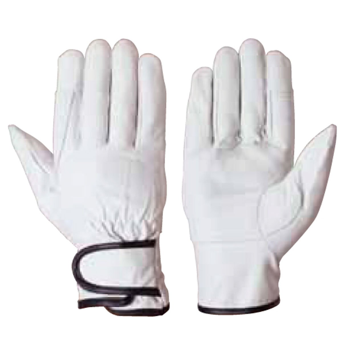 [アイゼックス]AIZEX 牛本革手袋【革手袋】(補強当て革付マジック止め式10双入り)《002-AZG-202LL》 B00IW5O4LG