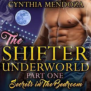 Secrets in the Bedroom Audiobook