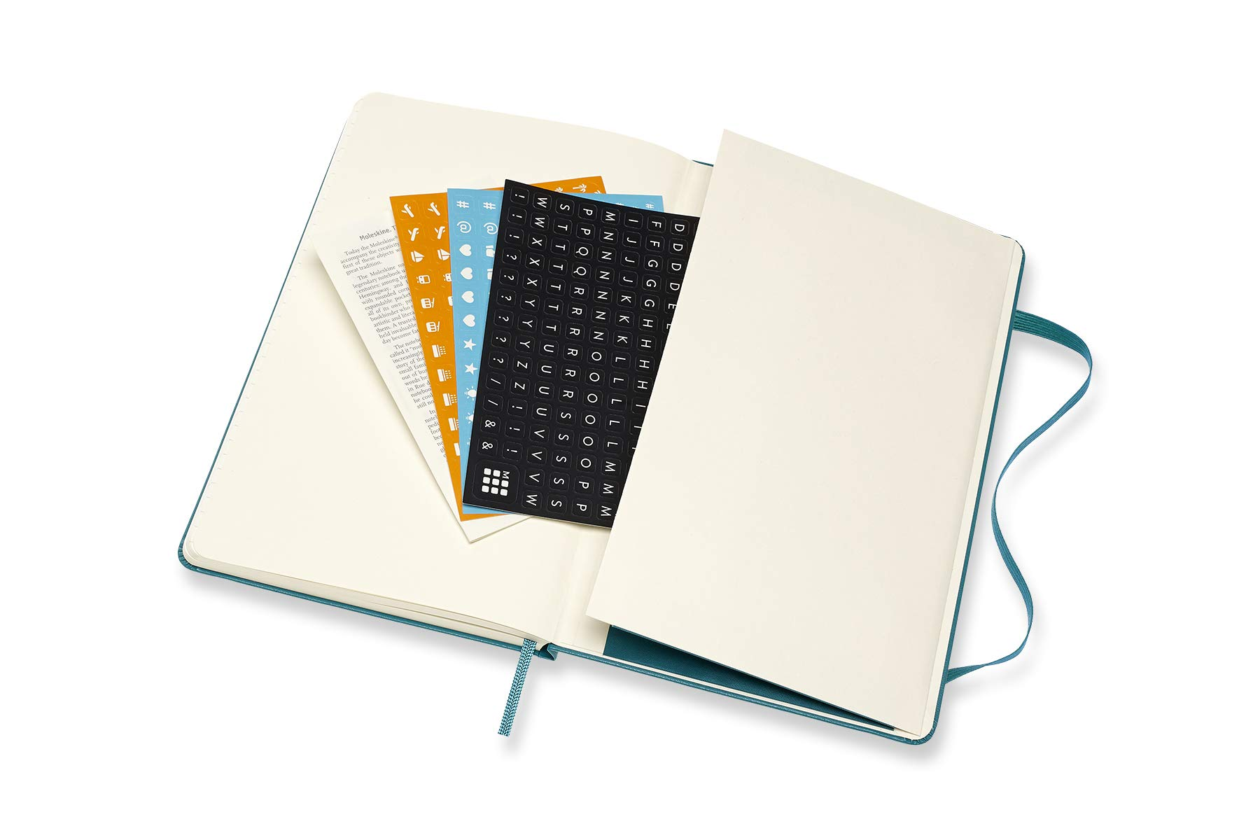 Moleskine 2019-20 Weekly Planner, 18 Month, Large, Magnetic ...