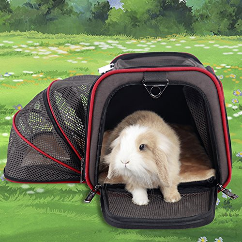 Petsfit-Expandable-Foldable-Washable-Travel-Carrier-Airline-Approved-Pet-Carrier-Soft-sided