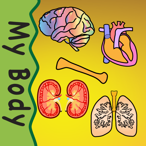 Body Organs 4 Kids (Four Organ)