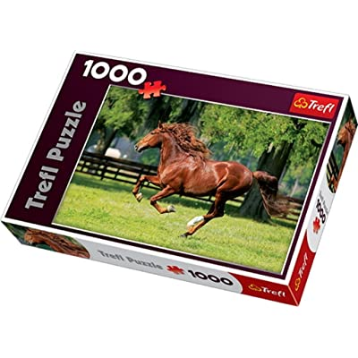 Trefl Gallop Jigsaw Puzzle (1000-Piece): Toys & Games