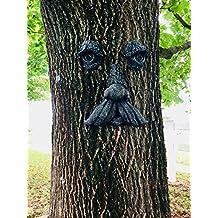 Mountain Man Tree Face (Iron Stone Moss)