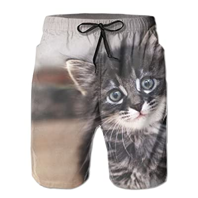 Cat Kitten Kitty Pet Fit Mens Shorts Beach Swim Trunk Summer