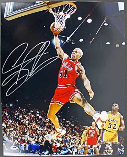 Signed Dennis Rodman Photo - 16X20 vs Lakers - PSA/DNA Certified - Autographed NBA Photos from Sports Memorabilia