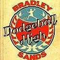 Dodgeball High Audiobook by Bradley Sands Narrated by Joe Hempel