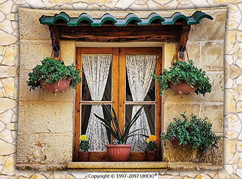 Shutters Decor Fleece Throw Blanket Basket of Flowers at Historic Building Window with Classic Lace Curtain Inside Image Throw