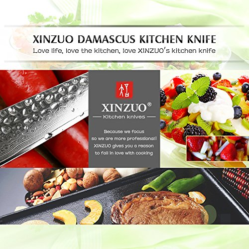 XINZUO Cutlery 6 inch Utility Knife Japanese VG-10 Damascus Steel Kitchen Knife Fruit Knife Peeling Razor Sharp Hammered Finish with Rosewood Handle - Yun Series by XINZUO (Image #5)