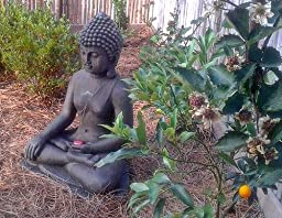 Amazoncom Sitting Buddha Faux Sandstone 29 12H Outdoor Statue