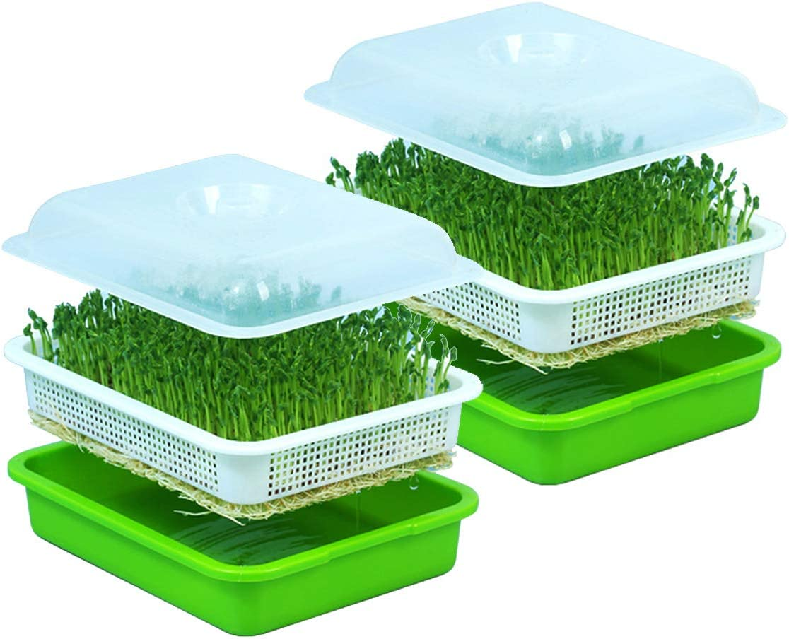 Seed Sprouter Tray with Lid BPA Free Bean Sprout Grower 2pcs Tray