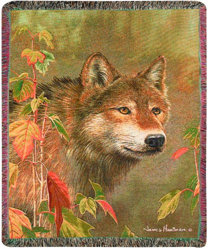 Manual The Lodge Collection 50 x 60-Inch Tapestry Throw with Fringe, Hidden in The Mist by James ()