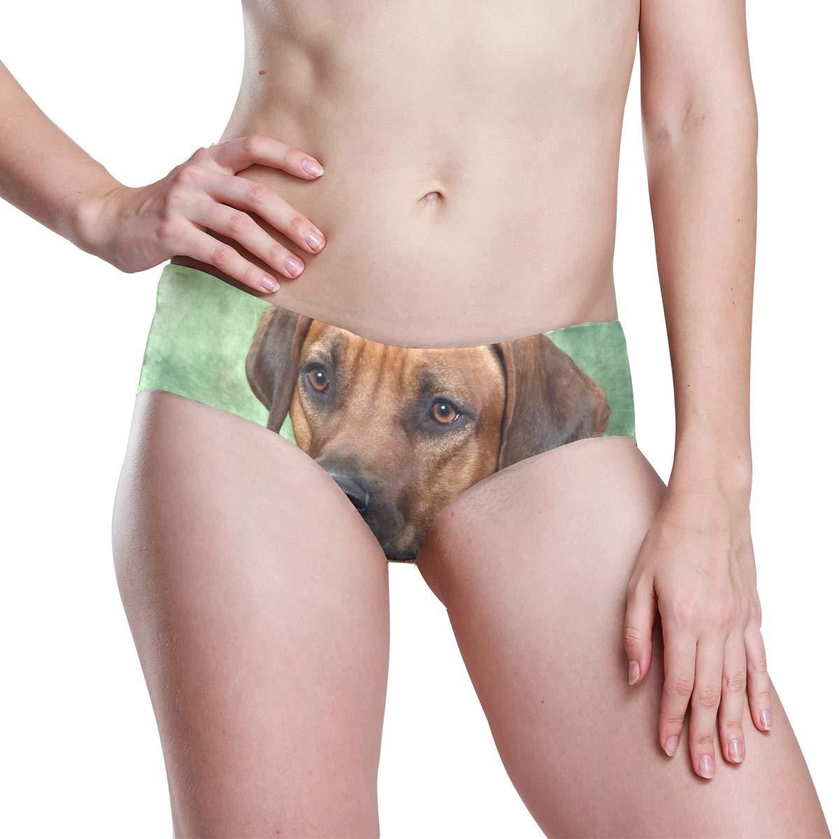 KGuanJi Seamless Rhodesian Ridgeback Dog Bikini Underwear Low Rise-2 Pack