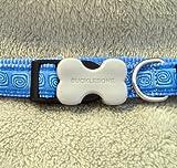 Dog Collar - Hypno Mid Blue - Small